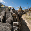 Mani stones and Buddhist stupe or chorten in Himalayas — Stock Photo #11787945