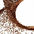 Stock Video: Coffee beans whirl with slow motion over white