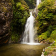 Waterfall in Himalayas: beautiful landscape — Stock Photo