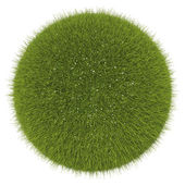 World of grass and flowers: green globe — Stock Photo