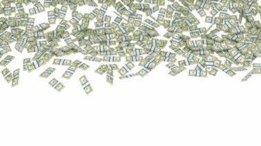 Доллар Сша пучки падают с медленное движение — Стоковое видео