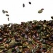 Stock Video: Unsorted Coffee beans mixing and tossing up with slow motion