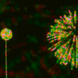 Loopable abstract Fireworks with colorful background — Stock Video