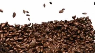 Coffee beans mixing and tossing up with slow motion