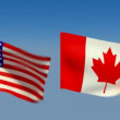 Loopable USA and Canada Flags — Stock Video