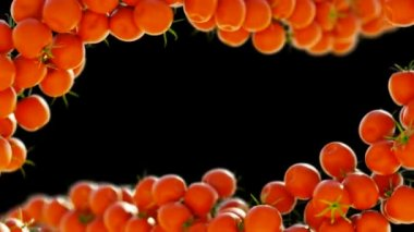 Two Tomatoe Cherry flows with slow motion. — Stock Video