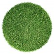 Environment: green fresh grass globe or planet isolated — Stock Photo