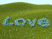 Forget-me-nots love word and green grass — Stock Photo