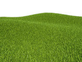 Green grass meadows and hills — Stock Photo