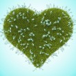Green grass heart with forget-me-not flowers — Stock Photo
