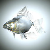 Glassy fish with scales and fins — ストック写真
