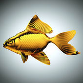 Golden Goldfish — Stock Photo