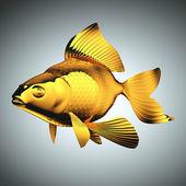 金鱼鳞片与鳍 — 图库照片