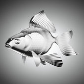 Chromium-plated goldfish — Stock Photo