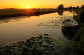 Sunset over a ditch with a boat and waterlily — Stock Photo