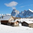 Chalets on the Alpe di Siusi — Stock Photo #14692627