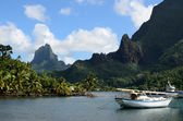 Bay in tropical Moorea — Stock Photo