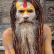 sadhu — Stock Photo #37290657