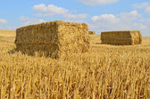 Straw bale drying in the sun — Stock Photo