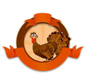 Thanksgiving turkey cartoon character — Stock Vector