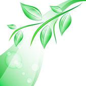 Rama con hojas — Vector de stock