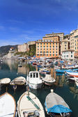 Haven in camogli, italië — Stockfoto