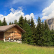 Barn on Alpine pasture — Stock Photo