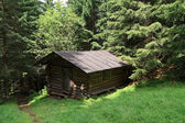 Barn on the forest — Stock Photo