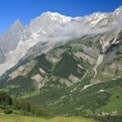 Ferret valley and mont Blanc - vertical — Stock Photo
