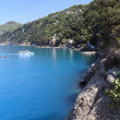 Golfo Paradiso, Liguria, Italy — Stock Photo #25408895