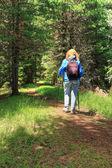 Turysta w lesie — Zdjęcie stockowe