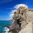 Ancient castle in Camogli — Foto Stock