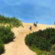 Stock Photo: Piscinas dunes