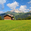 Dolomiti - Val di Fassa — Stock Photo