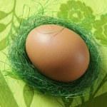 Brown egg — Stock Photo #1611402
