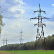 Royalty-Free Stock Photo: Power pylons in a summer forest