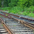 Stock Photo: Railway in forest