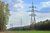 Power pylons in a summer forest — Stock Photo