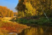Beautiful autumn landscape — Stock Photo