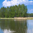 Summer lakeside panoramic — Stock Photo #41278129