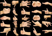 Collection hands — Stock Photo