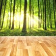 Wood floor background — 图库照片