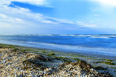 Nature seascape — Stock Photo