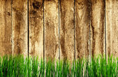 Wood texture. background old panels — Stockfoto
