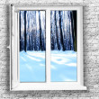 White plastic window — Stock Photo #23009814