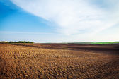 Plough agriculture field — Stock Photo