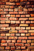 Grunge brick wall — Photo