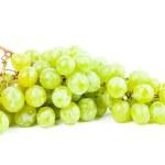 Постер, плакат: Green vine