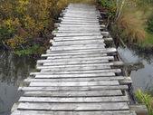 Old wooden bridge — Stock Photo