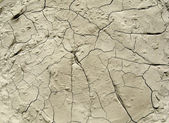 Cracks in the ground — Stock Photo